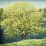 Ива цветет 77х96 холст масло 2006г